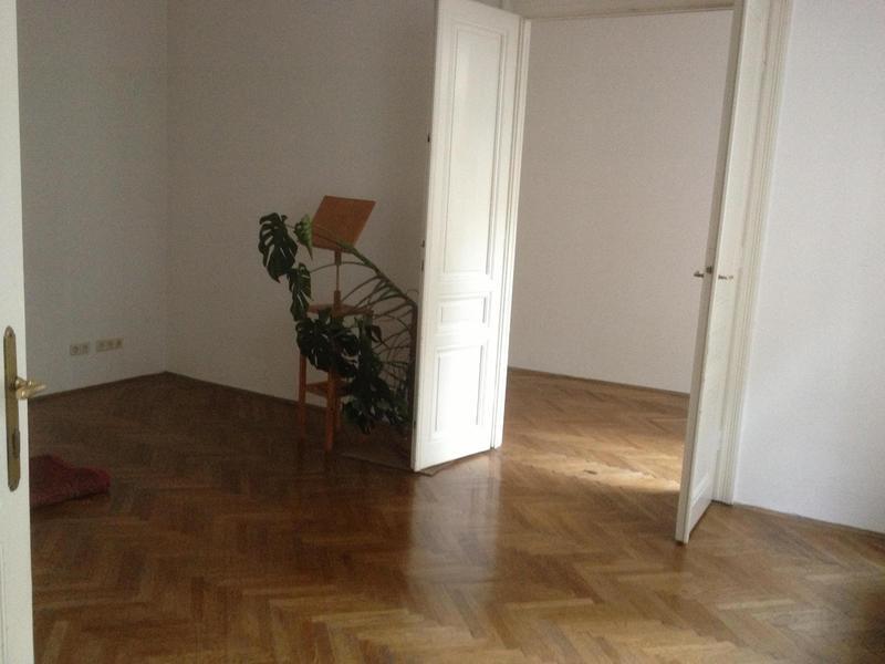 Altbauwohnung Sobieskigasse 1090 Wien