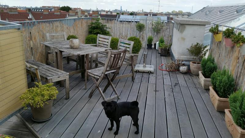 Dg Wohnung Mit Sonniger Terrasse 1150 Wien Mietguru At
