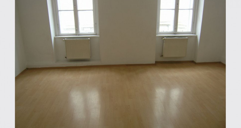 Single wohnung wien 250 euro