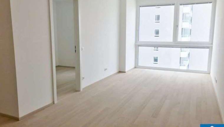 Provisionsfreie 2 Zimmer Wohnung 1100 Wien Mietwohnung Wien