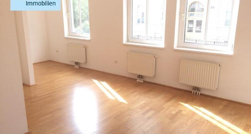 Preiswerte 1-Zimmer-Wohnung nahe Pilgramgasse