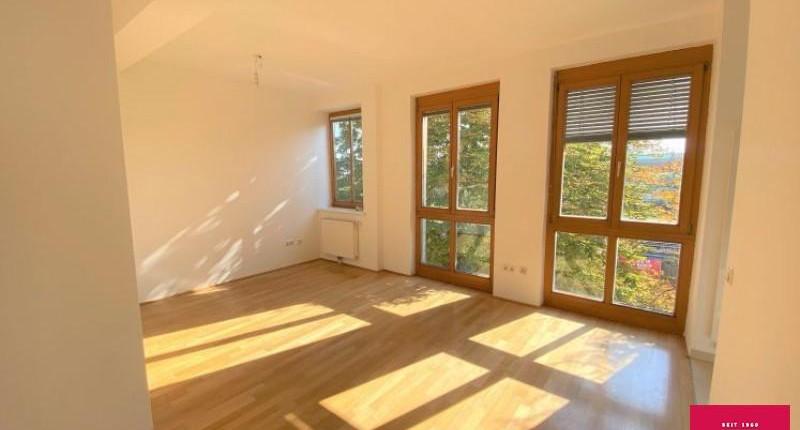Günstige 1-Zimmer-Mietwohnung 1190 Wien