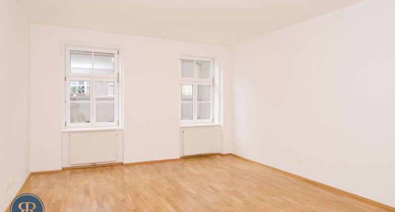 Große 1 Zimmer Wohnung Alsergrund