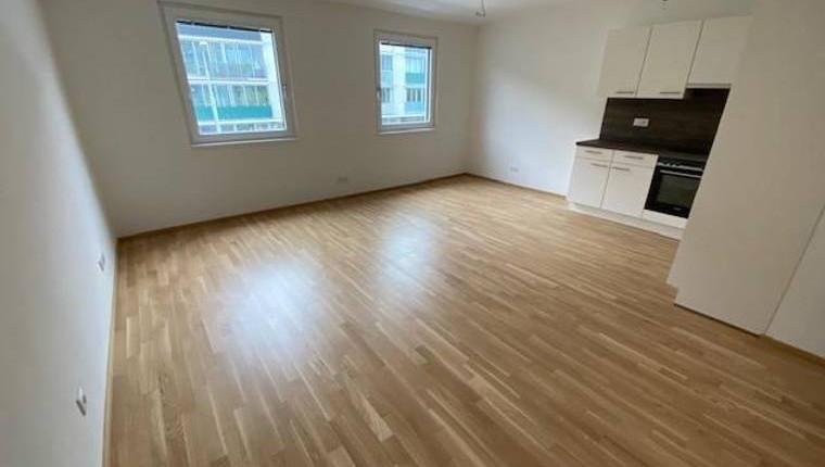 Provisionsfreie 1 Zimmerwohnung unter 550€